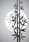 bamboo_cz_b