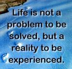 life-is-not-problem-but-reality