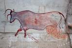 graffiti-animal-art-1113tm-pic-1770