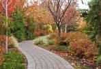 autumn-pathway-1013tm-pic-1519