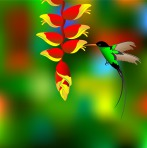 flower-with-colibri_z164U0UO