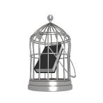 book-in-a-bird-cage_MkuvwUu_