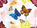 seamless_pattern_1000009457-120613int