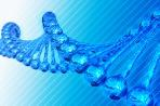DNA Chain
