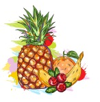 vector-fruits-with-colorful-splashes_z1HI4Rr_