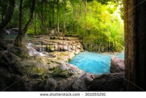stock-photo-tranquil-and-peaceful-nature-background-of-beautiful-river-stream-flowing-through-natural-cascades-301055291