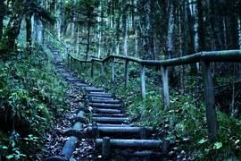 hiking-1036972__180