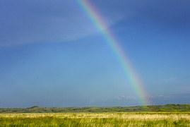 rainbow-952533__180