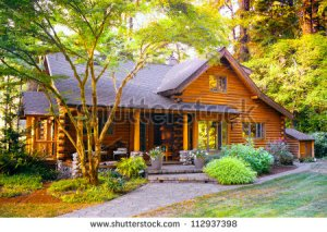 stock-photo-modern-log-cabin-home-in-a-forest-environment-112937398