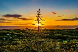 sunset-850877__180
