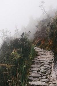 trail-867235__340