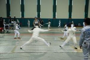 fencing-811985__340