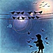 birds-700441__180