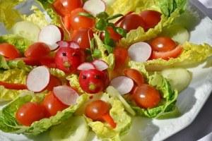 salad-1477486__340