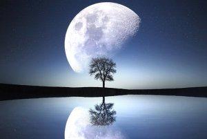 moon-1807743__340