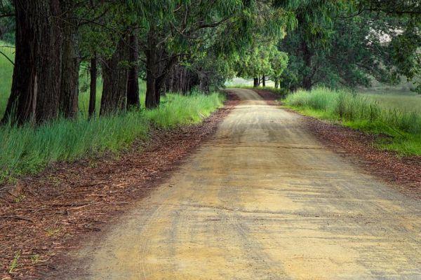 road-1894938__480