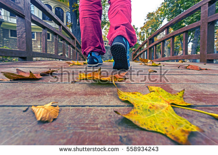 stock-photo-adult-person-in-blue-sport-shoes-and-red-casual-pants-walking-on-wooden-boardwalk-in-downtown-park-558934243