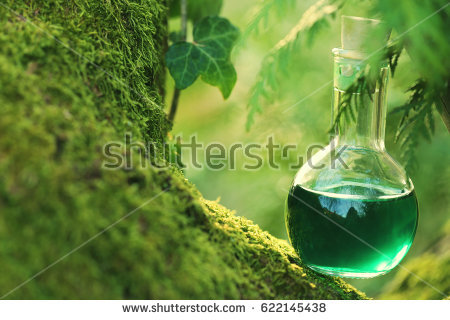 stock-photo-herbal-potion-on-a-mossy-tree-spell-potion-herbal-elixir-magic-potion-homeopathic-medicine-622145438