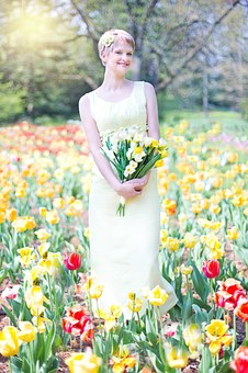 field-of-tulips-635266__340