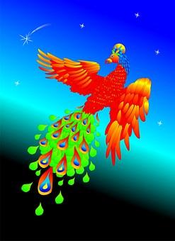 bird-1474600__340