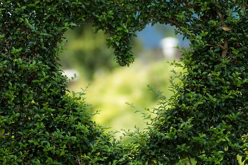 heart-1192662__340