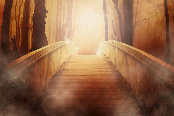 bridge-19513__480