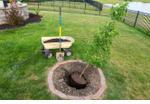 stock-photo-transplanting-a-new-young-maple-tree-in-a-garden-into-a-fresh-hole-dug-in-a-circular-flowerbed-in-1111266677
