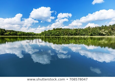 lake-landscape-summer-view-lakeshore-450w-708578047