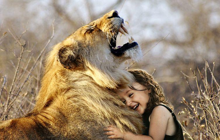lion-3012515__480